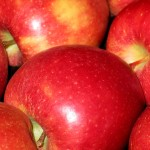 Apple Braeburn - DANIEL Nursery