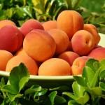 Apricot Harcot
