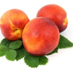 Peach Red Haven