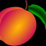 peach-41169_1280